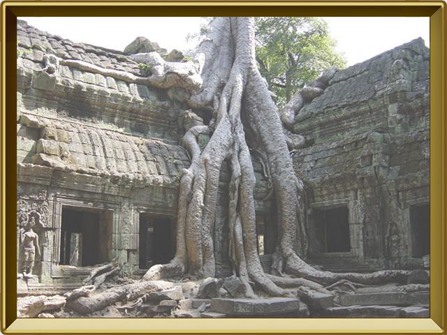 Ангкор — город, фото в рамке №3