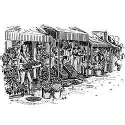 Антананариву — город, картинка чёрно-белая