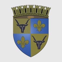 Антананариву — герб города, картинка цветная