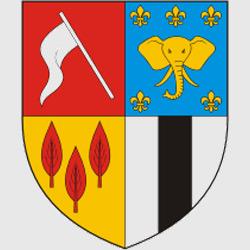 Браззавиль — герб города, картинка цветная