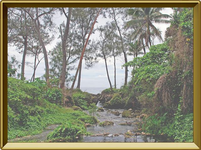Океания — познавательно, фото в рамке №3