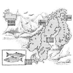Скандинавия — познавательно, картинка чёрно-белая