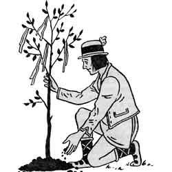 Майское дерево — праздник, картинка чёрно-белая