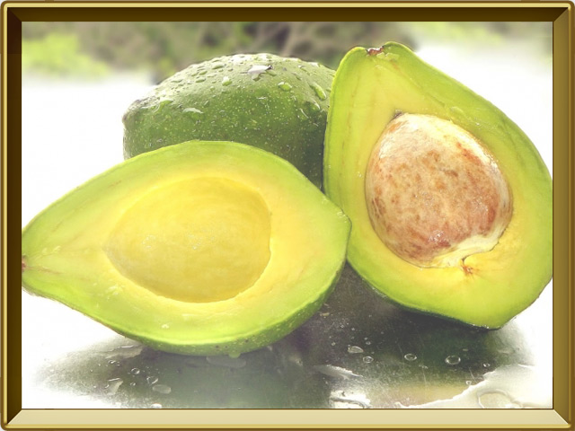 Авокадо — растение, фото в рамке №3