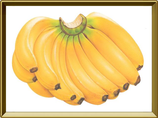 Банан — растение, фото в рамке №1