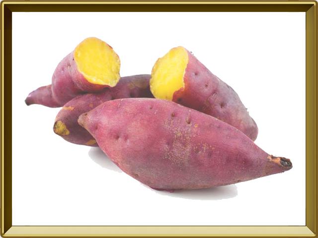 Батат — растение, фото в рамке №1
