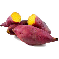 Батат — растение, картинка цветная