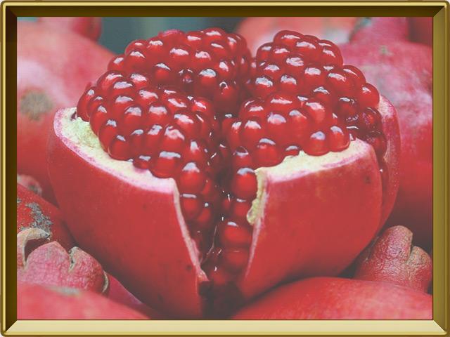 Гранат — растение, фото в рамке №3