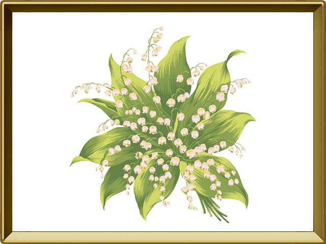 Ландыш — растение, фото в рамке №1
